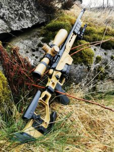 Rifle in Grass